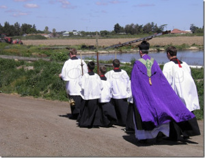 procession v2