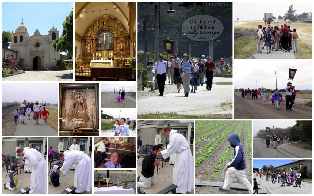 Summer 2014 OLB Pilgrimage 2014